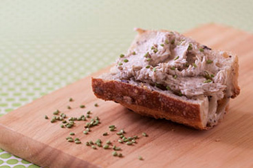 Salmon rillettes « homemade duet of salmons with lemon cream and dill »